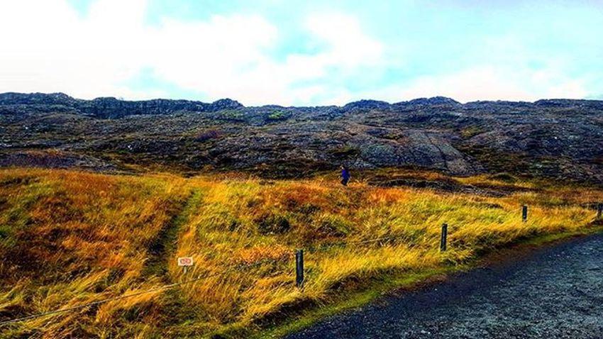 Run Iceland Whyiceland AdventureThatIsLife Thatadventurelife Ig_iceland Wheniniceland