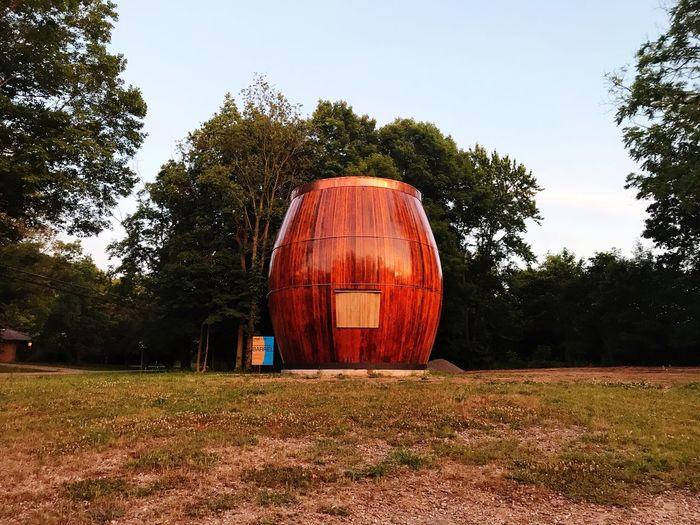 Tree Barrel