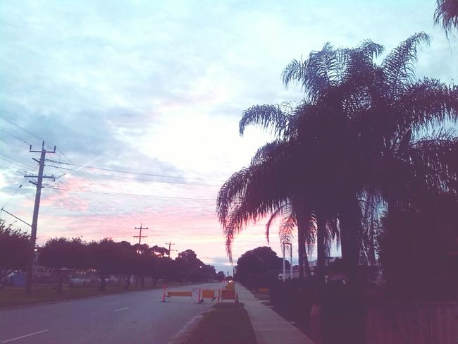 Check This Out Sunset Enjoying Life Relaxing Taking Photos Beautiful Streetphotography Followme Palmtree OpenEdit