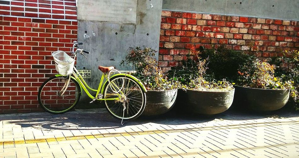 Bicycle Brick Wall Transportation Outdoors Day Sidewalk No People