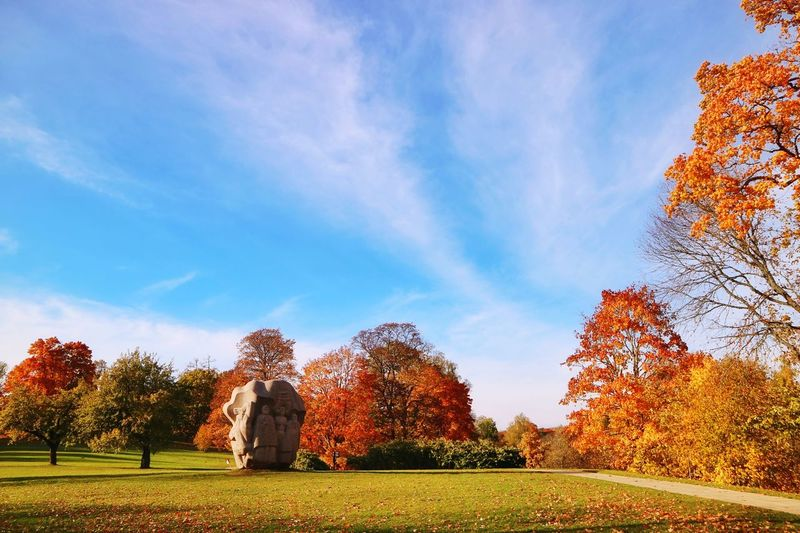 Yellow Autumn Leaves Autumn colors Autumn Landscape_Collection Landscape_photography Landscape Tree Politics And Government Park - Man Made Space Sky Grass Tranquility Tranquil Scene Countryside Non-urban Scene Fall