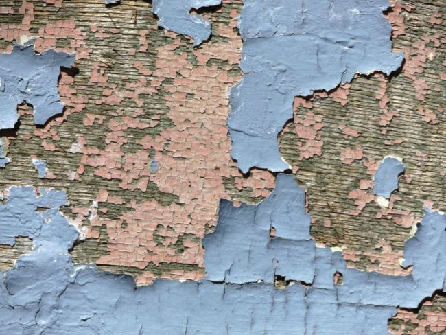 Architecture Backgrounds Bad Condition Blue Built Structure Close-up Cracked Damaged Deterioration Full Frame No People Obsolete Outdoors Paint Peeled Peeling Peeling Off Pink Ruined Run-down Textured  Wall - Building Feature Weathered Wood - Material Worn Out