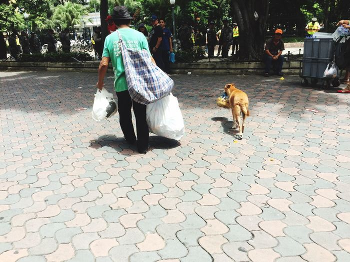Dog Recycle
