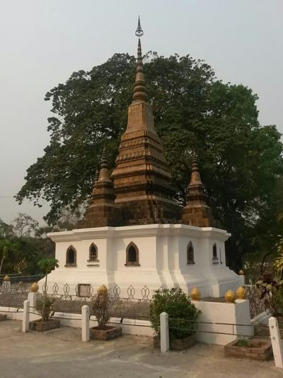 Luang Prabang City South East Asia Ancient Civilization Architecture Belief Building Building Exterior Built Structure Day History Laos Luang Prabang Old Quarter Nature No People Outdoors Place Of Worship Plant Religion Sky Spire  Spirituality Temple Temple - Building Travel Destinations Tree
