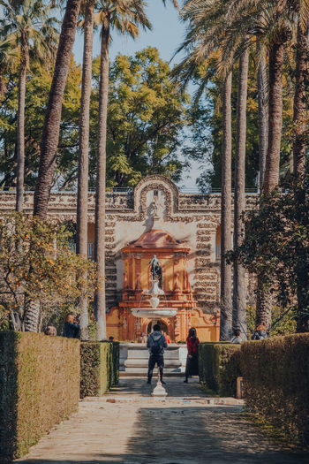 Rear view of people walking amidst trees against building