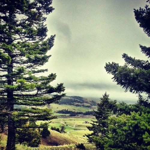 Hiking Bozeman