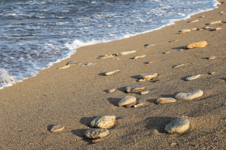 Pebbles on a sandy beach Beach Land Sand Sea Water Nature Sport Wave Day High Angle View Motion Sunlight Beauty In Nature Shell Pebble Close-up