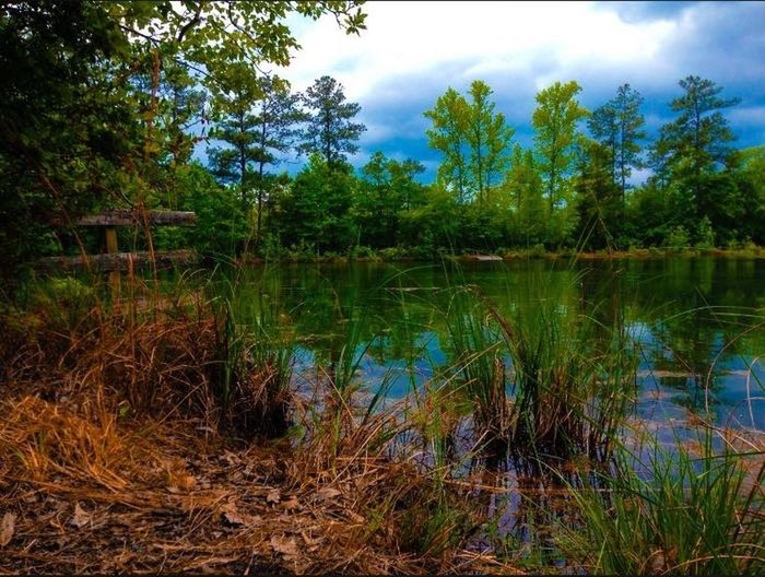 Outdoors Pond