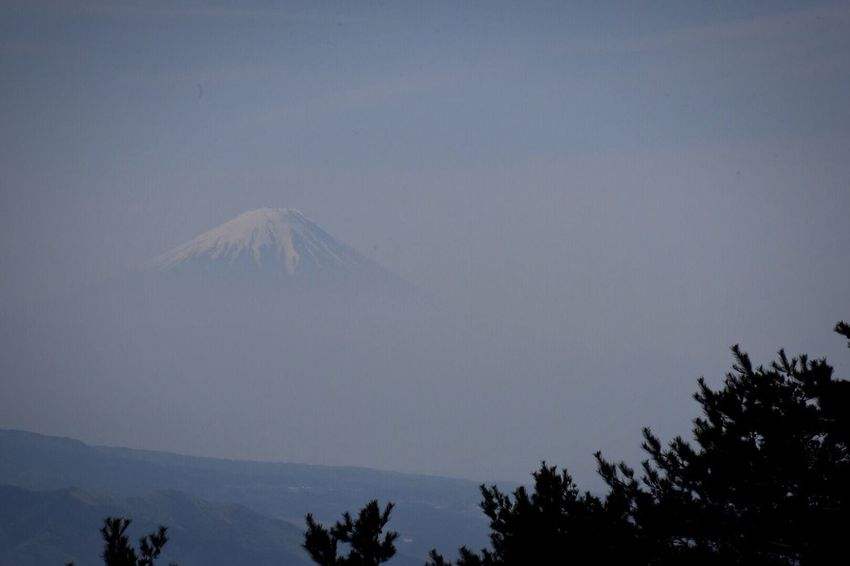 Landscape Mt.Fuji Tree Beauty In Nature Scenics - Nature Mountain Plant Sky Tranquil Scene No People Mountain Peak