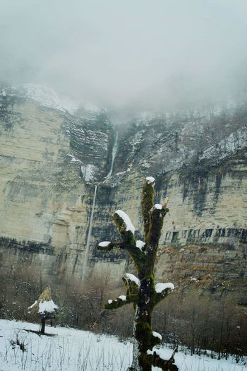 კინჩხა Kinchkha #კინჩხა #waterfalls #kinchkha Cold Temperature Weather Nature Snow Sky Day Tree Outdoors Winter