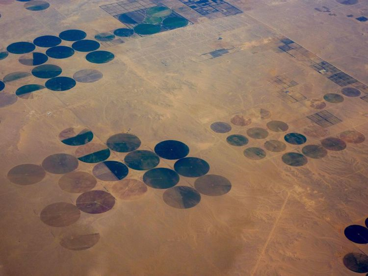 Flighing High Aerial View No People Pattern Backgrounds Nature Day Patchwork Landscape Close-up Outdoors EyeEmNewHere Aerial Photography Geometric Shape Egypt