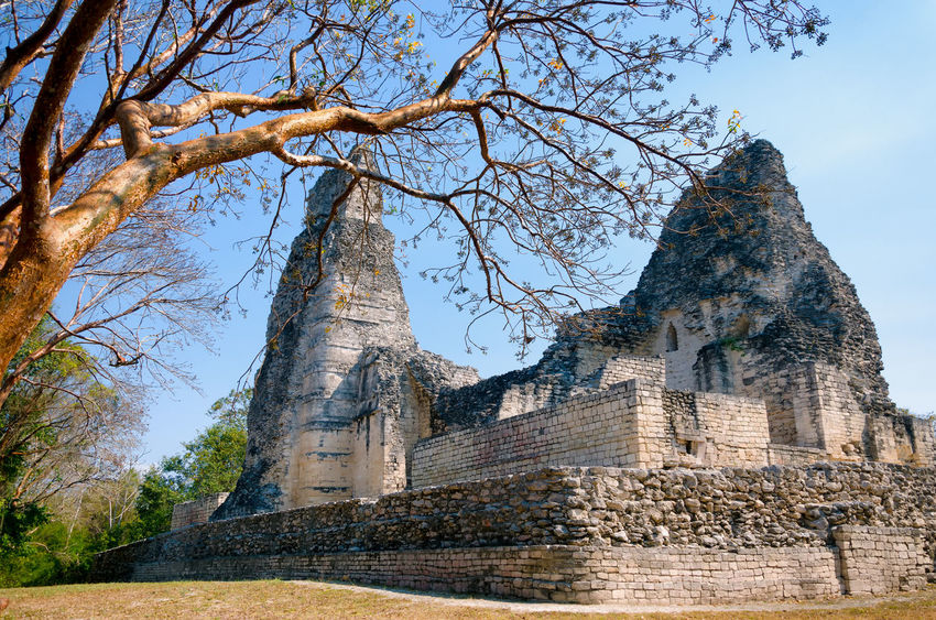 Xpujil temple area close to Campeche in Mexico Ancient Archeology Campeche City Mayan Mayan Ruins Mexico Pyramid Pyramids Ruins Travel Yúcatan Acropolis Archaeological Archaeological Sites Civilization Landmark Maya Monument Rivera Sacred Site Temple Xpujil Yucatan Mexico
