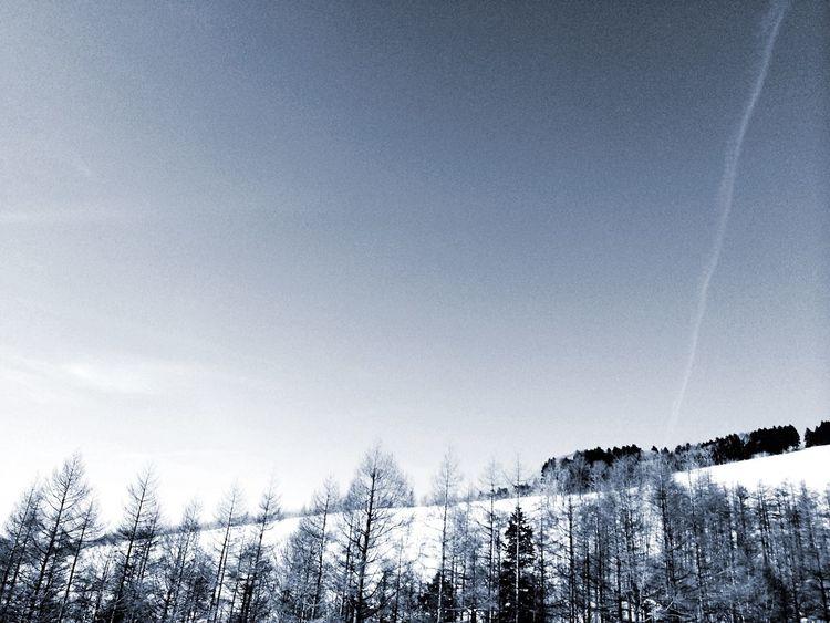 Monochrome Snow Nature Vapor Trails Winter ✈︎✈︎✈︎