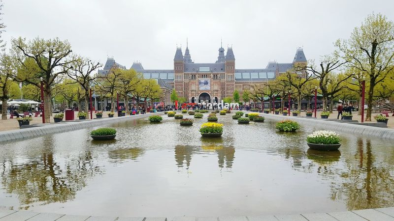 Fleurs Amsterdam Travel Destinations Water Architecture History Reflection Built Structure Reflecting Pool Politics And Government Amsterdamcity King - Royal Person Outdoors City Sky Outdoors King - Royal Person Sky City Rijksmuseum Musei Museum People Day