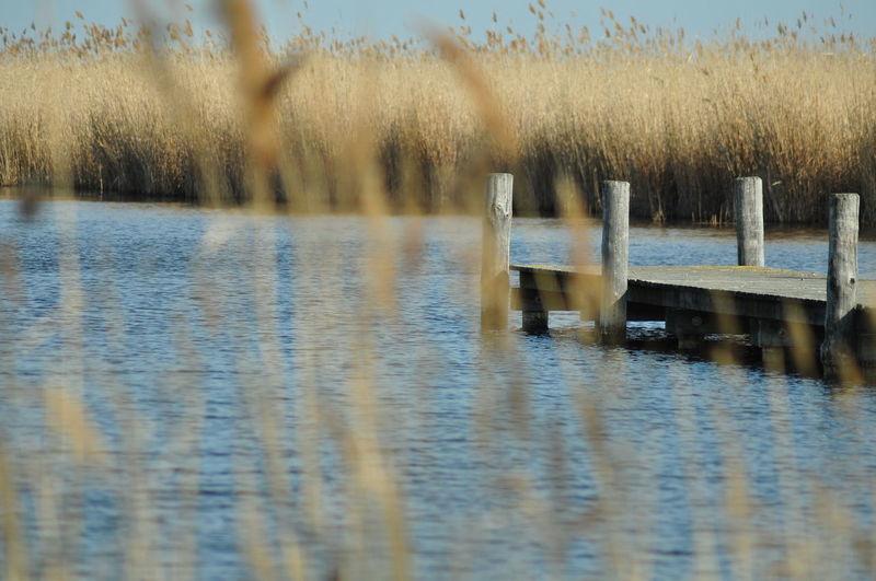 Beauty In Nature Idyllic Lake Nature Outdoors Water Waterfront