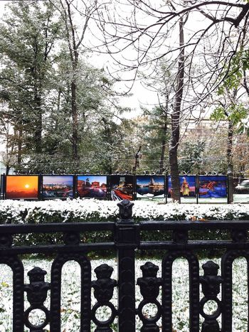 Winter excibition Snow Tranquility Snow Covered Tranquil Scene Scenics Silence City Streetphotography Photography While Contrast Excibition Beautiful Street