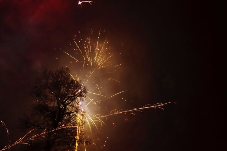 Low angle view of fireworks at night