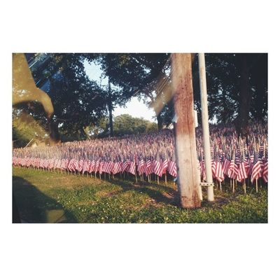 Tribute to all the lives that gave America freedom. Flags Tribute Heroes