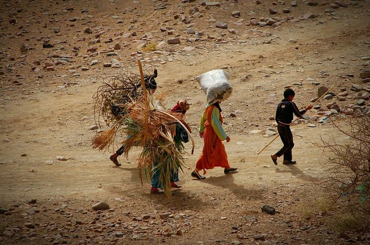 Team work Family Working Hard Life In Desert Desert Morocco Trabajando Família Marruecos Africa Untold Stories The Tourist Showcase March Finding New Frontiers The Street Photographer - 2017 EyeEm Awards