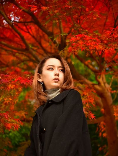 Portrait of beautiful young woman standing against autumn trees