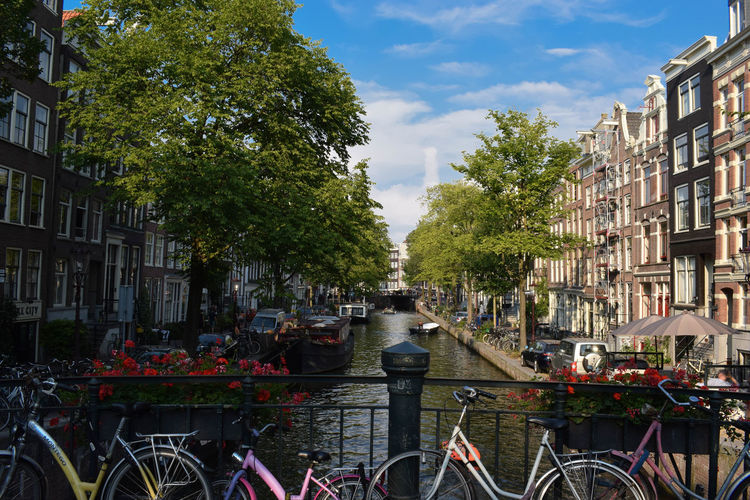 Bicycles by canal amidst buildings in city