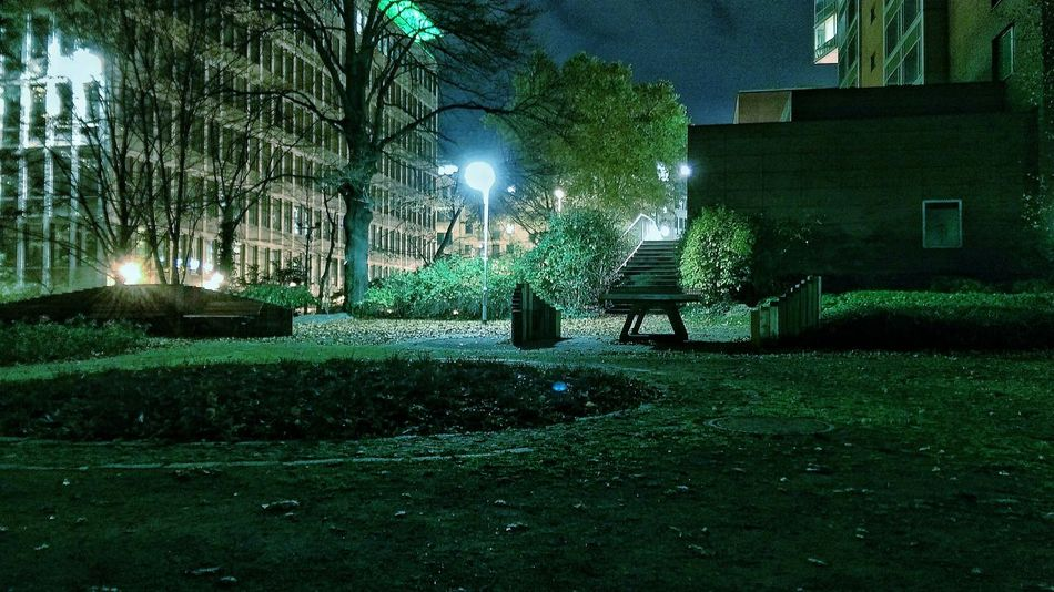Smartphonephotography Nightphotography Park