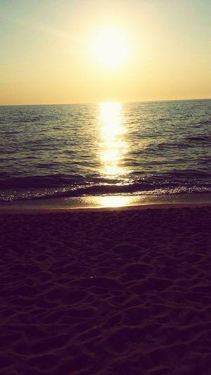 Sea :3