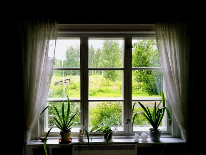 Window View From The Window... Curtains My Home Nature Building Kuopio Finland Two Is Better Than One