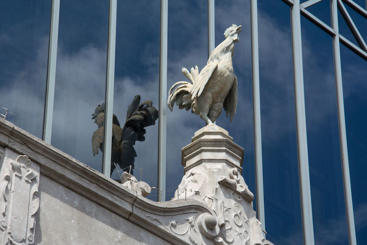 Low Angle View Of Rooster Statue On Glass Building