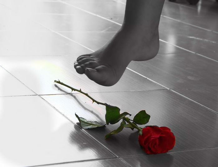 Accident Action Black And White Photography Character EyeEmNewHere Fall In Love Flower Foot Hate Human Leg Lost Love One Person Overlook Red Rose Rose🌹 Tread Tread On Valentine Valentine's Day  Crazy Crazy In Love Broken Heart Hurt Sad