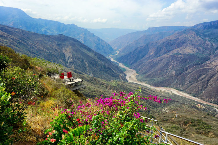 Panorama view of Chicamocha Canyon and river in Santander, Colombia Colombia Santander Bucaramanga Mesa De Los Santos Los Santos Town Landscape America South America Andes Andes Mountains Cordillera De Los Andes Travel Travel Destinations Mountain Mountain Range Canyon Chicamocha Chicamocha Canyon Chicamochariver Nature Beauty In Nature Scenics - Nature Flower Plant Tranquil Scene Tranquility Outdoors Land Idyllic Panachi National Park River Panorma Panorama View Landmark Monument Valley