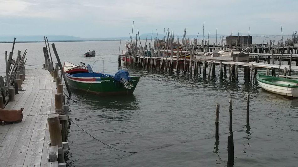 Docks Doca Pier Cais Boat Fish Fishing Sea Seafoods Wood