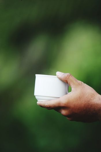 Close-up of person holding cup
