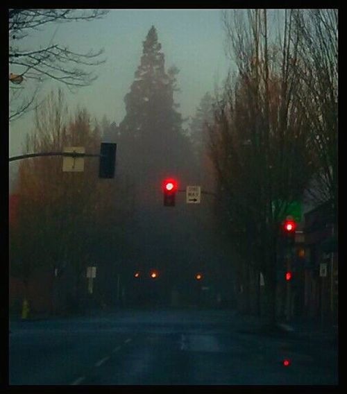 Outdoors Illuminated Transportation Traffic Signal City Bare Tree Red Light Fog Foggyness 3rd Street Morning Fog Thick Fog Lit Up With Lights Idyllic EyeEm Gallery Capturing Magic Streemzoofamily Getty Images Focus On Foreground Architecture Old Towncenter Nostalgic Place Down Town Night Early Morning Mist Mobility In Mega Cities