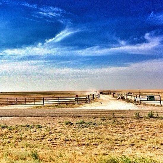 IPSEmpty Texas Flatlands Summer