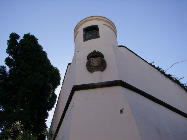 Fortaleza Sao Lourenco (16th century), Avenida Arriaga 16th Century City Composition Fortaleza Fortaleza Sao Lourenco Funchal Madeira Portugal Tourist Attraction  Tree Architecture Blue Sky Built Structure Coat Of Arms Fort Full Frame History Looking Up Low Angle View No People Outdoor Photography Tourism Travel Destination Turret White Walls