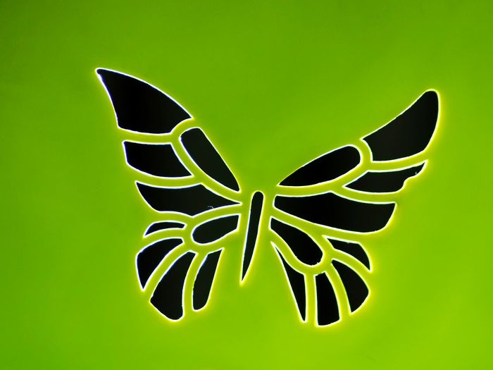 I want to live only one day Green Color Growth Nature Close-up Neat No People Butterfly Stamps Stilize Nature Growth Green Color Butterfly Plastic Neon Lights