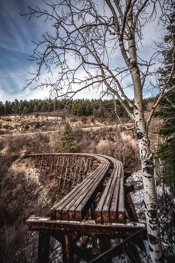 Cloudcroft Mexican Canyon Trestle Nature New Mexico Railway Bridge Scenics Tree Trestle Bridge Wood - Material Wooden Bridge