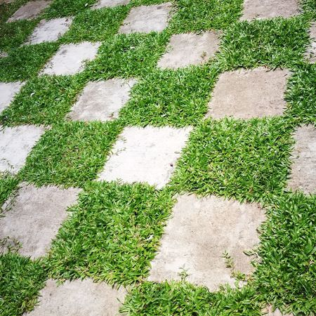 Nofilter HuaweiP9 Huaweiphotography Phonephoto Garten Rasen Jardin Pelouse Kebun Malacca Asie ASIA Malaysia Checkered Checkered Pattern Checkered Floor Day High Angle View Outdoors No People Green Color Grass Nature