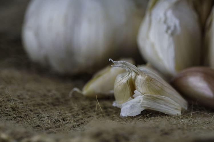 Close-up of garlic on ground
