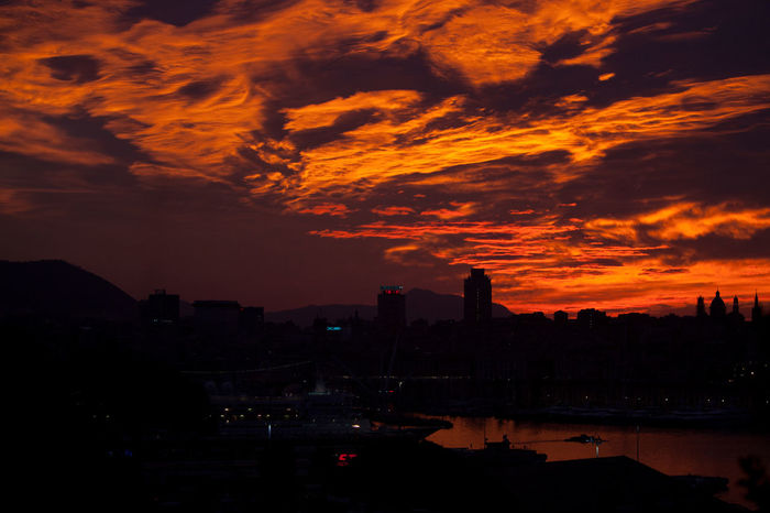Red Clouds of a New Day in Genova Beauty In Nature Burning Sky City Cky Clouds Clouds And Sky Dawn Dawn Of A New Day Day Genova Genova ♥ Genovacity Good Morning Nature No People Outdoors Red Cloud Red Clouds Red Sky Sky Skyline Sunset Urban Skyline Zena Zena4ever