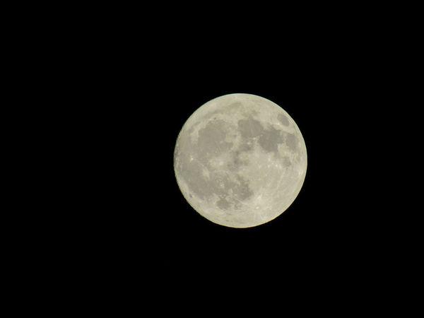 Sky Moon Full Moon Close-up Beautiful Night Night Sky Astronomy Outdoors San Antonio Texas