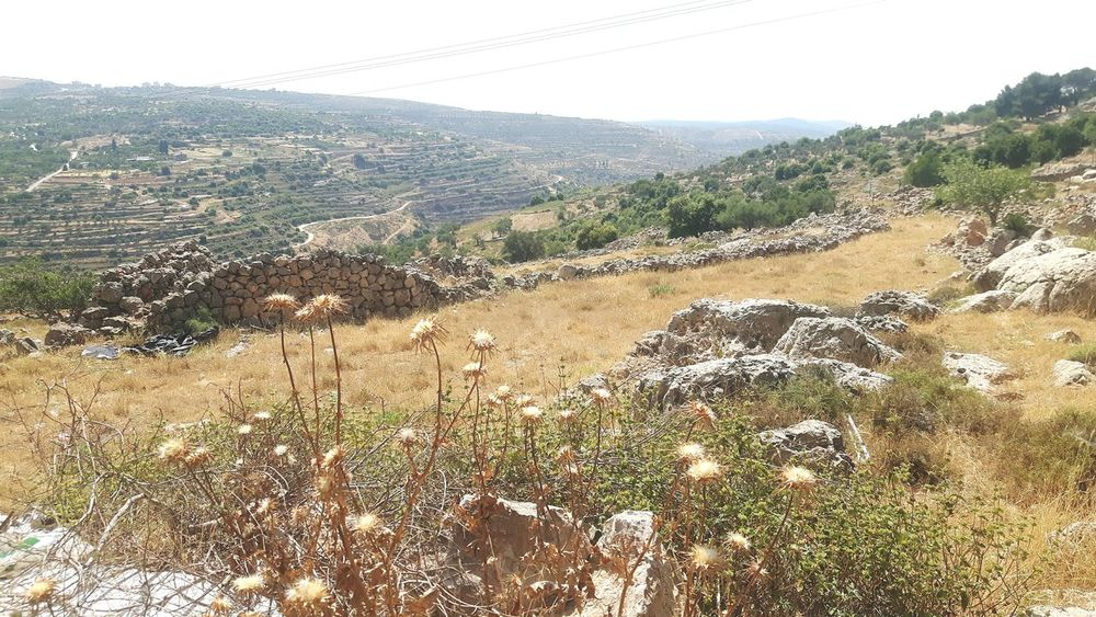 Beyt Jalla Beyt Jala Bayt Dschalla West Bank Machrout Valley Palestine Palestinian Hiking Valley Israel Machrour Valley Palestinian Territory Traveling Near East Taking A Stroll
