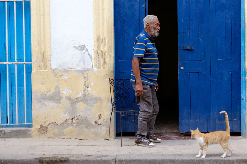 Door Standing One Person Casual Clothing Males  People Outdoors Pets Adult Streetphotography Street Photography Cuba Havana Chair Cat