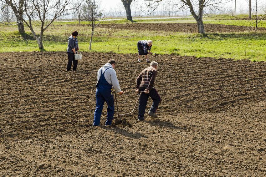 Agriculture Field Group Of People Outdoors People Plowed Field Rural Scene Teamwork The Photojournalist - 2017 EyeEm Awards