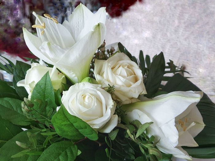 Close-up of white rose bouquet