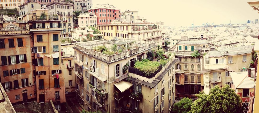 Genoa Italy Wideangle Oldtown