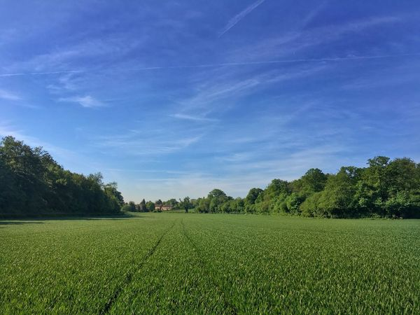 Towards Croxley Green village Sky Green Color Field Beauty In Nature Grass Landscape Rural Scene Agriculture Scenics - Nature