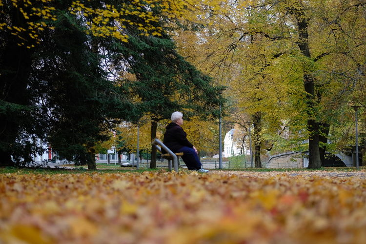 Autumn Tree One Person Change Plant Real People Leaf Sitting Plant Part Men Nature Day Seat Full Length Lifestyles Leisure Activity Adult Bench Park Outdoors Warm Clothing