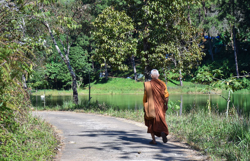 Rear view of monk walking on road by lake